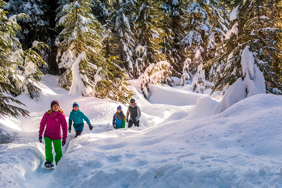 About-Whistler-Snowshoe